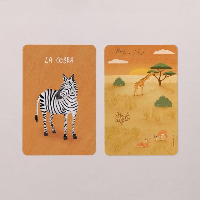 Tarjetas Animales