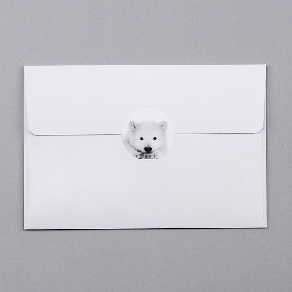 Scandi Bear